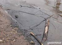 Горючее разлилось на площади 250 кв м возле пермской речки Грязнуха