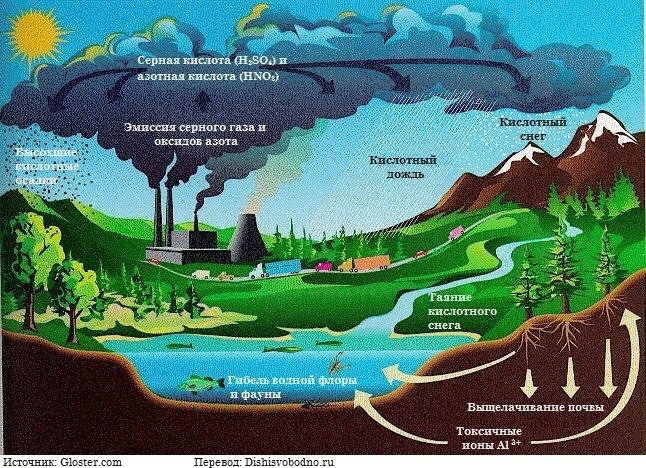 Глобальные экологические проблемы Решение экологических проблем  Глобальная экологическая проблема №5 Загрязнение почвы